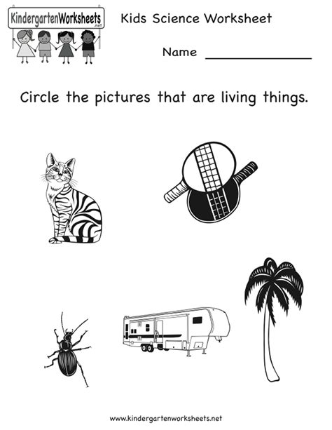preschool science worksheets free printables index of images printables science
