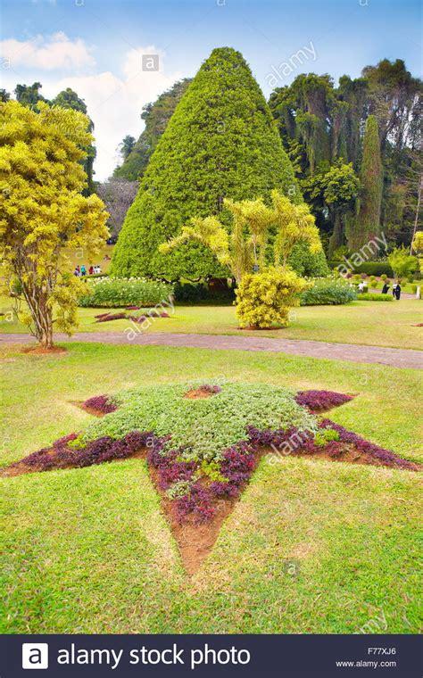 kandy botanical garden sri lanka kandy peradeniya botanic garden stock photo