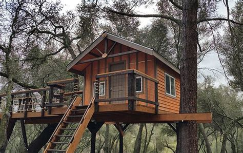tree houses designs and plans kids treehouses kids tree house design ideas playhouses
