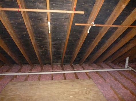 Black Mold In Attic - indoordoctor on indoor air quality blizzard will cause