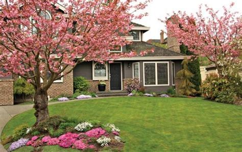 curb appeal landscape enhance curb appeal with landscaping