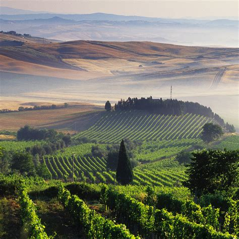best wine in tuscany tuscany s best wine regions travel leisure