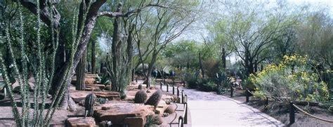 botanical cactus gardens las vegas things to do in vegas besides gamble ethel m chocolates