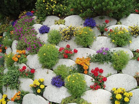 Flowers For Rock Gardens Stunning Rock Garden Design Ideas Corner