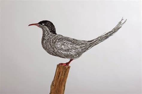 And Bird Sculptures by Simply Creative Wire Bird Sculptures By Celia Smith