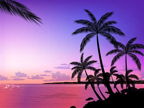 palm tree wallpaper palm tree wallpapers wallpaper cave