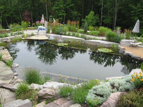 Natural Pool by 67 Cool Backyard Pond Design Ideas Digsdigs