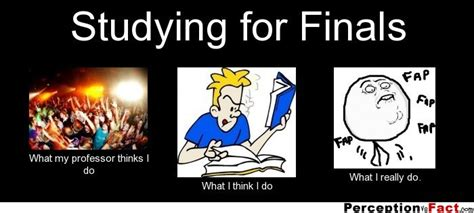 Studying For Finals Meme - studying for finals what people think i do what i