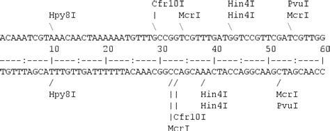 cadenas de adn y arn ejercicios m 233 todos predictivos en adn y arn bioinformatics at comav
