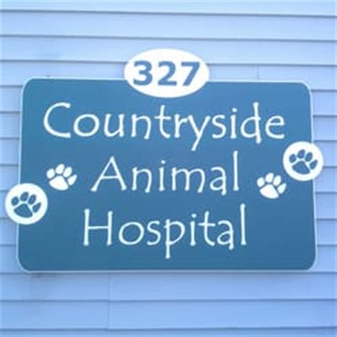 puppies on the run hudson nh countryside animal hospital veterinarians 327 derry rd hudson nh phone number
