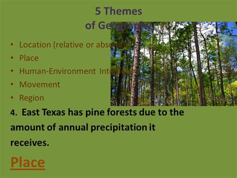 5 themes of geography jordan 5 themes of geography ppt video online download