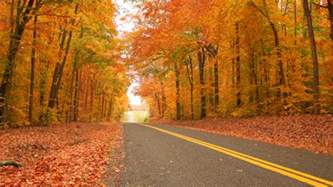fall colors michigan best roads peak dates to see fall colors as autumn takes