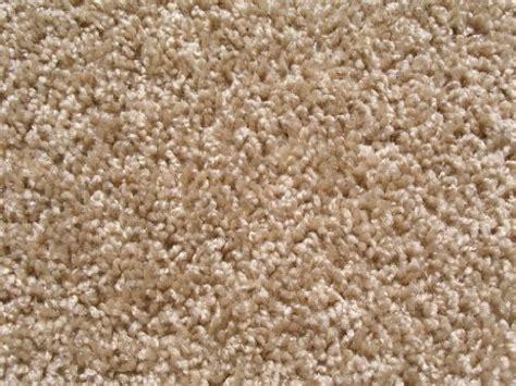 Frieze Rug frieze carpet carpet black kitchen rugs