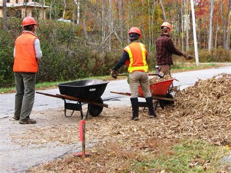 conservation corps completes construction  phase ii