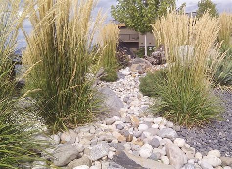 Landscape Rock Longmont Co A Rock Garden With Intermittent Grasses Pretty
