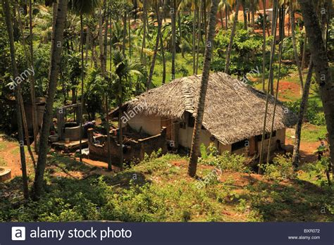 buy a house in kerala a primitive house in a jungle coconut grove in varkala kerala stock photo royalty