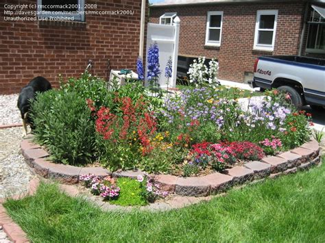 flower beds for beginners beginner gardening show us beginners your blooms 1 by