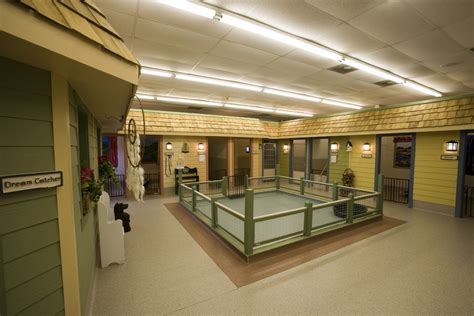 Daycare Floor Plans about knoxville all kreatures pet care facility all