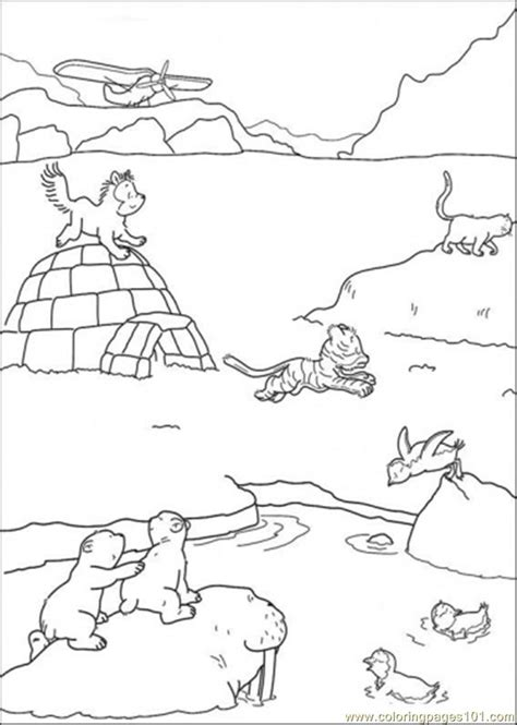 polar coloring pages polar arctic animals coloring pages prima r tipps