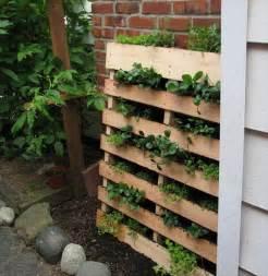 Vertical Herb Garden Pallet Diy Herb Garden Made Of Pallets 101 Pallets
