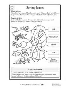 1st grade 2nd grade kindergarten science worksheets