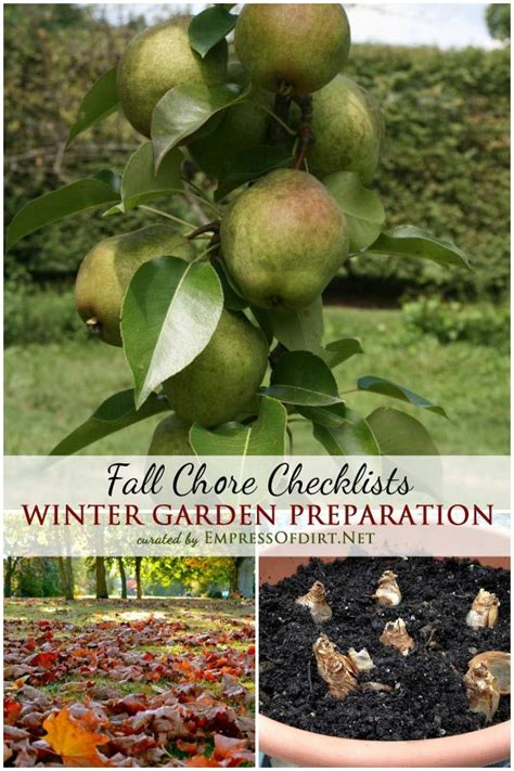 fall garden preparation 1000 images about empress of dirt on