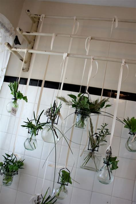 best plant for bathroom with no window plants in bathroom front windows and vases on pinterest