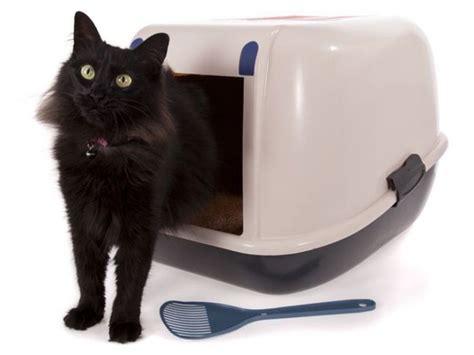 cassetta igienica per gatti cassette igieniche accessori per gatti