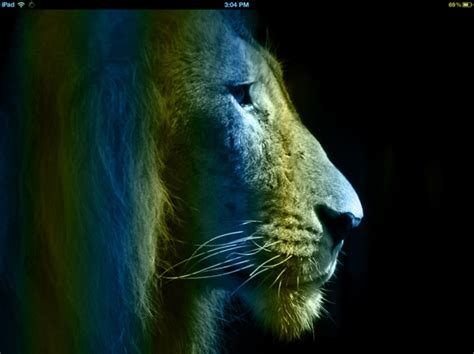 wallpaper blue lion weekend ipad wallpapers a few more of my own ipad insight