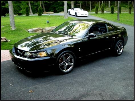 2004 Ford Cobra 2004 Ford Mustang Svt Cobra Pictures Cargurus