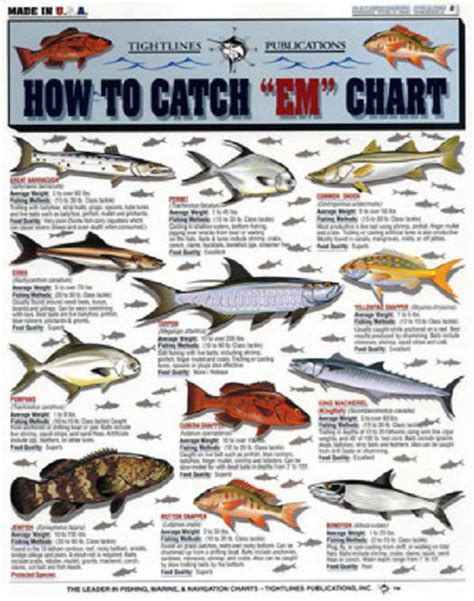 where when and how to catch fish on the east coast of florida classic reprint books saltwater fish how to catch quot em quot chart tightline