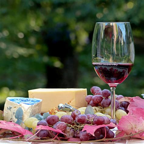 best food and wine pairings 36 best wine and food pairings how to choose the right wine