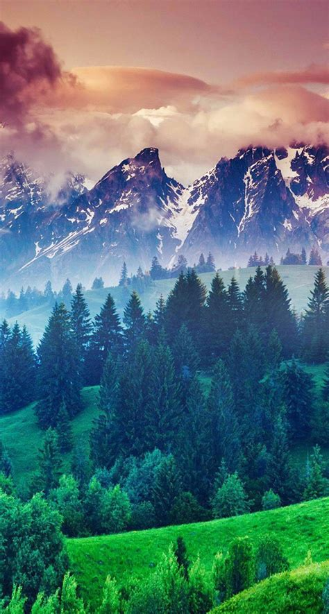 wallpaper iphone 6 forest forest hills snowy mountains and sunset clouds iphone 6