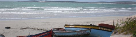 boat brokers west coast businesses for sale western cape