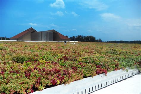liveroof green roof systems liveroof hybrid green roofs liveroof green roofs help