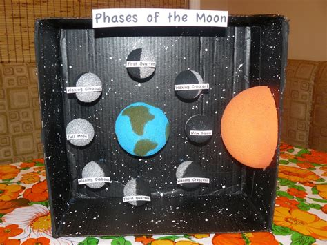 projects for phases of the moon projects miss m s science project