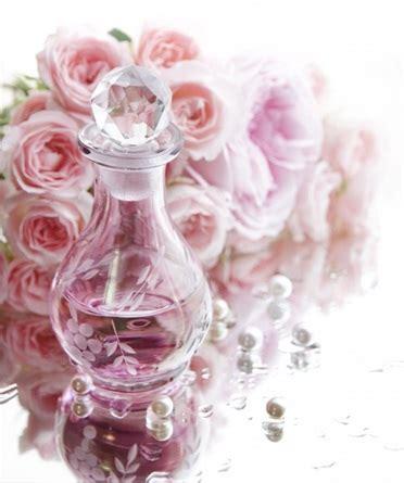 profumi di fiori profumi primavera 2016 omaggio alla rosa dei fiori