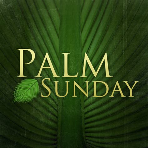 palm sunday images reverse search