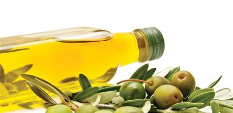 Jenis Dan Minyak Zaitun nutrisi jenis jenis minyak zaitun dan kandungan nilai