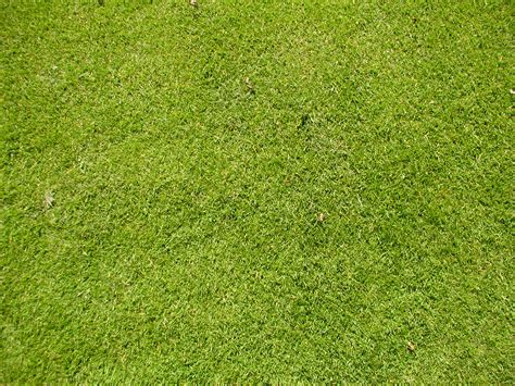 astro turf image after textures tabus grass astroturf green
