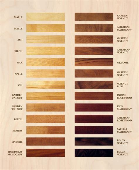 wood color chart 25 best ideas about color charts on awesome