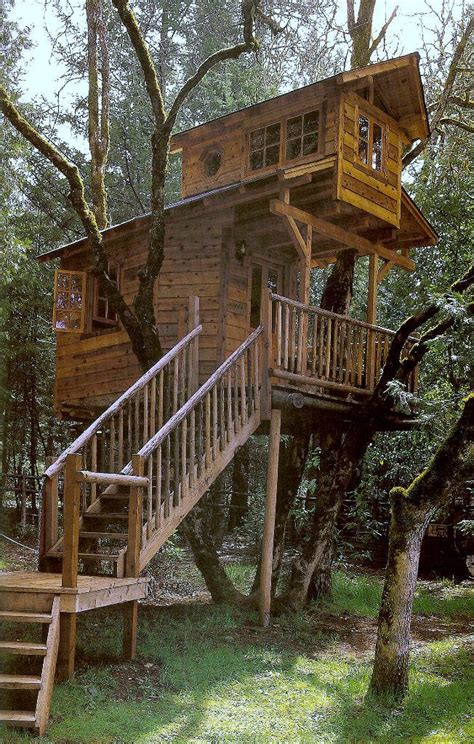 treehouse house treehouses treehouses pinterest