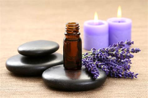 Aroma Therapy aromatherapy stress relaxation blend auntie dogma s garden spot