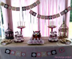 Owl baby shower party decorations and supplies pictures to