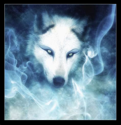 white wolf future authors images white wolf hd wallpaper and background photos 10700658