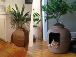 decorating your home with litter boxes offbeathome