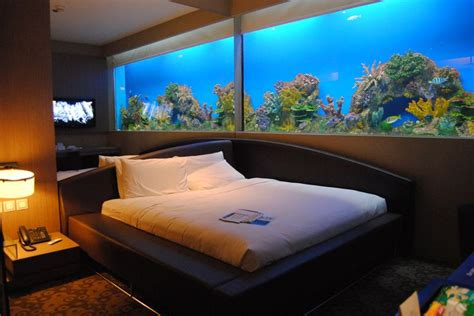 fish tank bedroom aquarium bedroom home if i were a rich woman pinterest