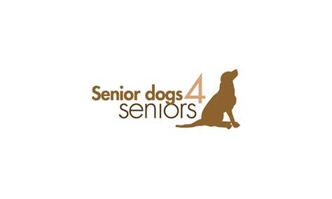 senior dogs 4 seniors senior dogs 4 seniors that do
