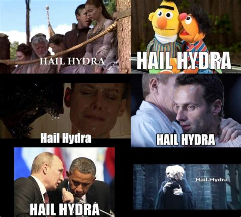 Hail Hydra Meme - my favorite marvel cinematic universe cameos 3rd world geeks