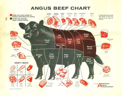 diagram of beef cuts cuts of beef diagrams to print diagram site